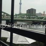 ( ・×・)隅田川とスカイツリーを眺めながら、美味しいイタリアンレストランでランチ「シエロイリオ」蔵前