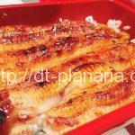 ( ・×・)あの噂のブランド鰻「坂東太郎」を食べに行ってきました「うなぎ 魚政」四つ木