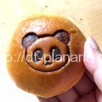 ( ・×・)エキュート上野の紀ノ国屋に可愛いミニパンダの焼印が押された「ミニあんぱん」みつけたよ