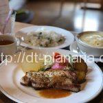 ( ・×・)札幌から車で1時間!わざわざここの為だけに行っていいりんご農園のレストラン「ハーベスト」長沼