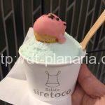 ( ・×・)JR上野駅ナカのエキュート上野に期間限定の可愛いジェラート屋さんが登場!「siretoco gelato(しれとこジェラート)」