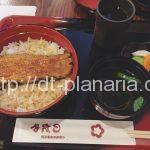 ( ・×・)老舗のめちゃくちゃ美味しい国産鰻ランチ8食限定1480円「入谷鬼子母神門前のだや」