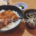 ( ・×・)焼き鳥と鰻が美味しい下町の居酒屋さん「鮒忠 東上野店」