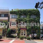 ( ・×・)渋谷の奥に絵本から飛び出しかのような素敵なガレット屋さんがあるよ「ガレットリア」