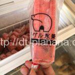 ( ・×・)鎌倉散歩の途中見つけたキュートなシロクマのアイスキャンディー「LONG TRACK FOODS」