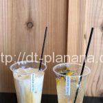( ・×・)江の電長谷駅のオシャレなカフェで美味しい自家製ソーダと大仏クッキー「KANNON COFFEE kamakura」